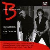 Beethoven: Cello Sonatas Nos. 2 & 3 - Variations in F major, Op. 66 by Jan Palenicek