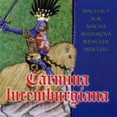 Carmina lucemburgiana by Various Artists