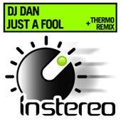Just a Fool by DJ Dan