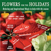 Flowers For The Holidays by David & The High Spirit