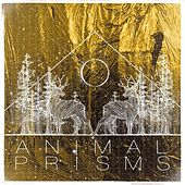 Animal Prisms by Pop Pistol