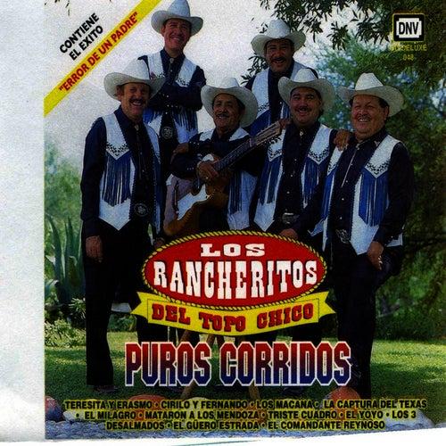 Puros Corridos by Los Rancheritos Del Topo Chico