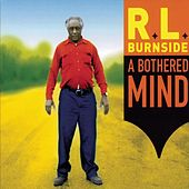 A Bothered Mind by R.L. Burnside