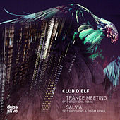 The Club d'Elf Remixes by Club D'Elf