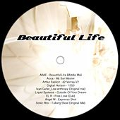 Beautiful Life - EP by Various Artists