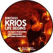 Life Begins by Krios