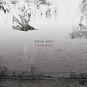 Laughing - Single by Steve Adey