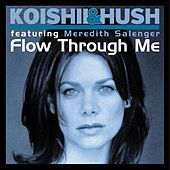 Flow Through Me (feat. Meredith Salenger) by Koishii & Hush