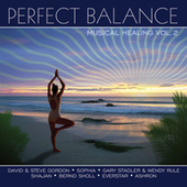 Perfect Balance Musical Healing Vol. 2 by Various Artists