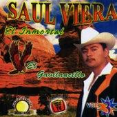 El Inmortal by Saul Viera