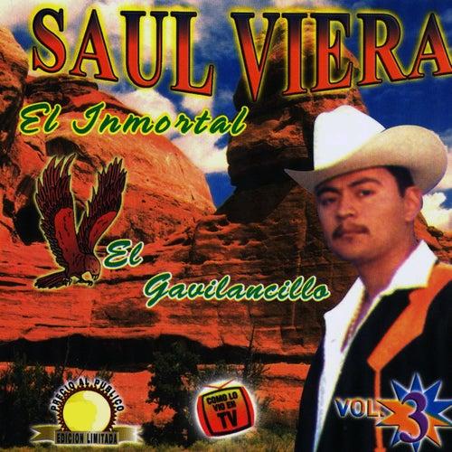 El Inmortal by Saul Viera ' El Gavilancillo'