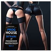 Progressive House Vol. 2 by Various Artists