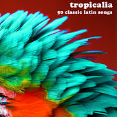 Tropicalia: 50 Classic Latin Songs by Various Artists