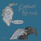 It's Alive by Elephant Revival