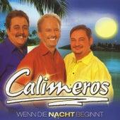 Calimeros - Und wenn die Nacht beginnt by Calimeros