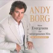 Meine Evergreens und unvergessenen Hits - CD1 by Andy Borg
