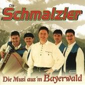 Die Schmalzler - Die Musi aus'm Bayerwald by Die Schmalzler