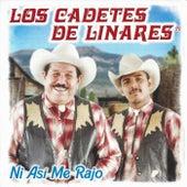 Ni Asi Me Rajo by Los Cadetes De Linares