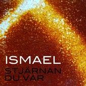 Stjärnan du var by Ismael