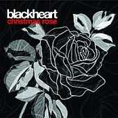 Christmas Rose by Blackheart