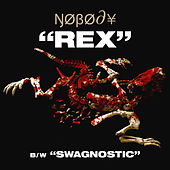 Rex / Swagnostic - Single by Nobody