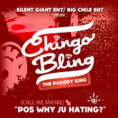 Call Me Maybe (Pos Why Ju Hating) by Chingo Bling