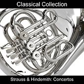 Strauss & Hindemith: Concertos by The Music Of Life Orchestra