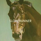 Fight Songs by Slow Runner