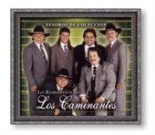 Tesoros de Coleccion: Lo Romantico de los Caminantes by Los Caminantes
