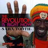 The Revolution Is Right Now! by Various Artists