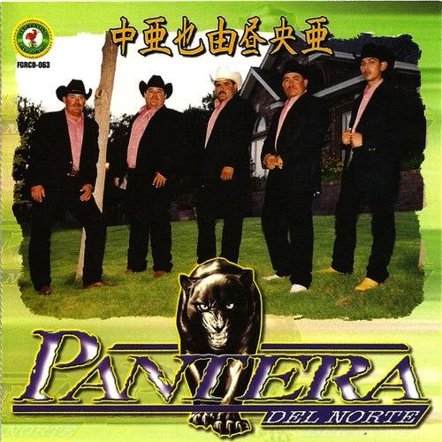 Razon Para Vivir by Pantera Del Norte