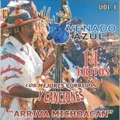 Los Mejores Corridos Y Canciones by El Venado Azul