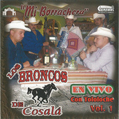 Mi Borrachera Tololoche by Los Broncos De Cosala