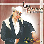 Laberinto by Larry Hernández