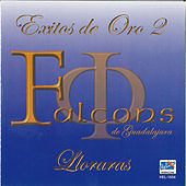 Exitos De Oro 2 by Los Falcons