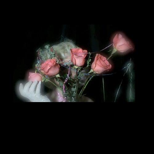 Videotape by Profligate