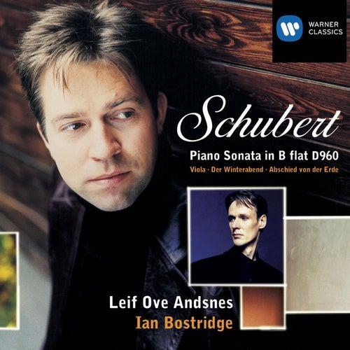 Piano Sonata D960 by Franz Schubert