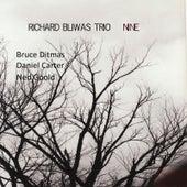 Nine by Richard Bliwas