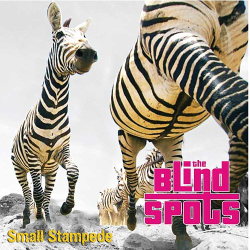 Small Stampede - EP by The Blind Spots