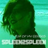Sum of My Senses by Spleen2spleen