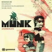 Androgyn RMX by Munk