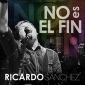 No Es El Fin by Ricardo Sanchez
