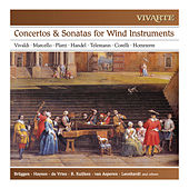 Concertos, Sonatas & Trio Sonatas for Wind Instruments: Vivaldi, Marcello, Platti, Handel, Telemann, Corelli, Hotteterre von Various Artists