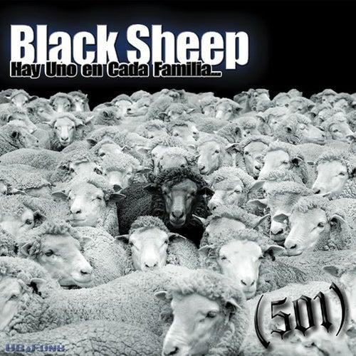 Black Sheep by 501