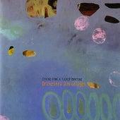 Orchestra Dim Bridges by Eyvind Kang & Tucker Martine