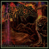 Volatile Existence by Burning The Masses