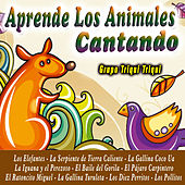 Aprende los Animales Cantando by Grupo Triqui Triqui