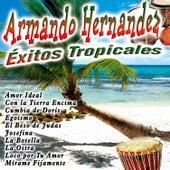 Éxitos Tropicales by Armando Hernandez