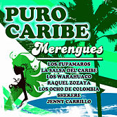 Puro Caribe - Merengues by Various Artists