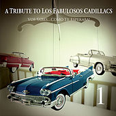 A Tribute to Los Fabulosos Cadillacs (Vos Sabes) by Various Artists
